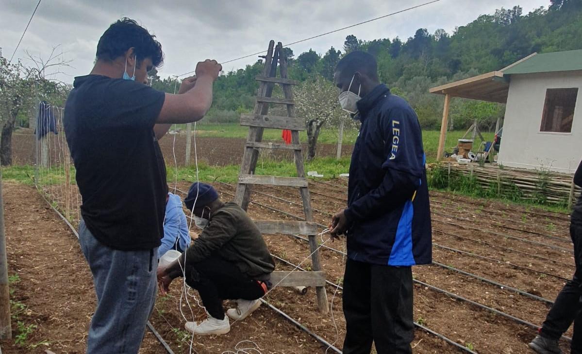 Coltivare giovani talenti: l'orto dei ragazzi del Sai di Caserta